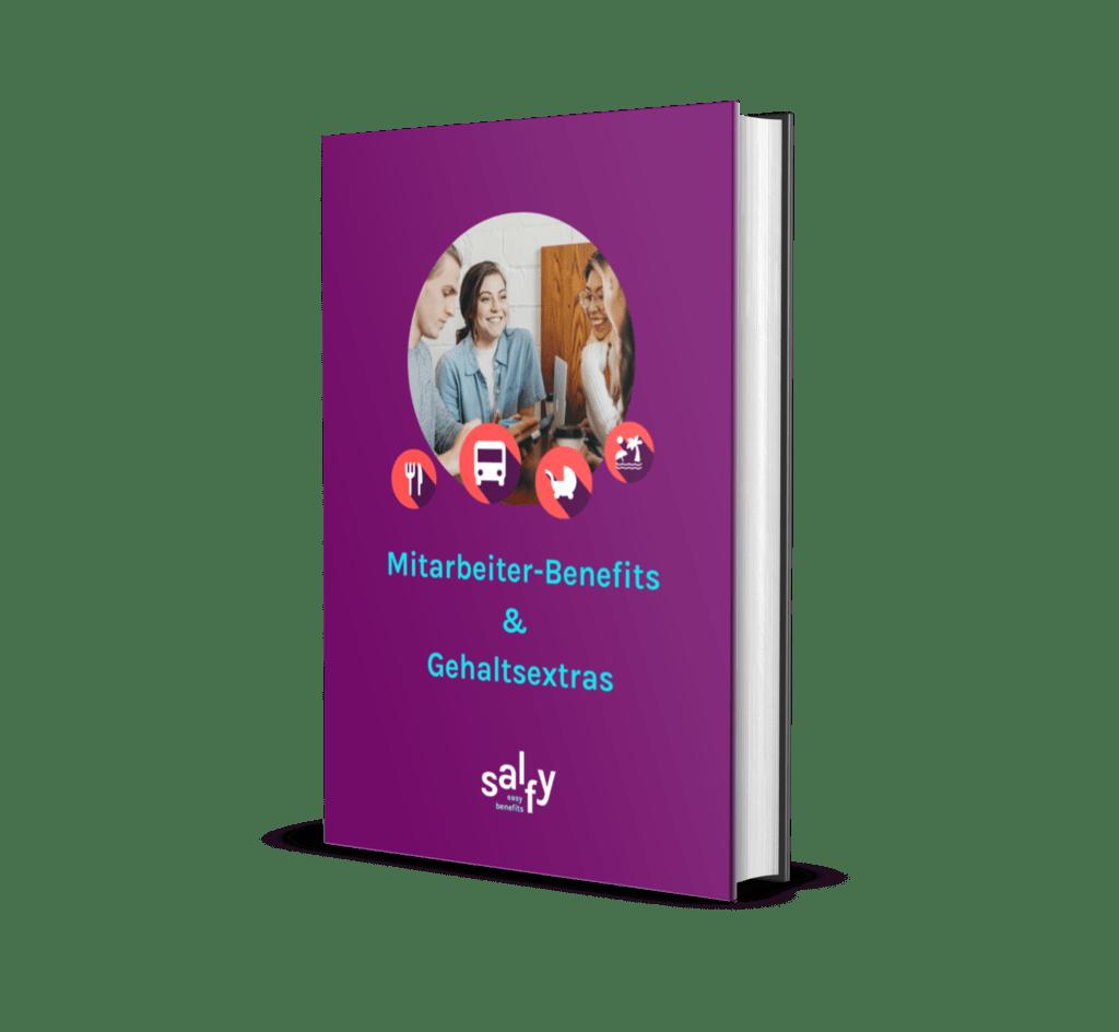 E-Book Salfy Cover